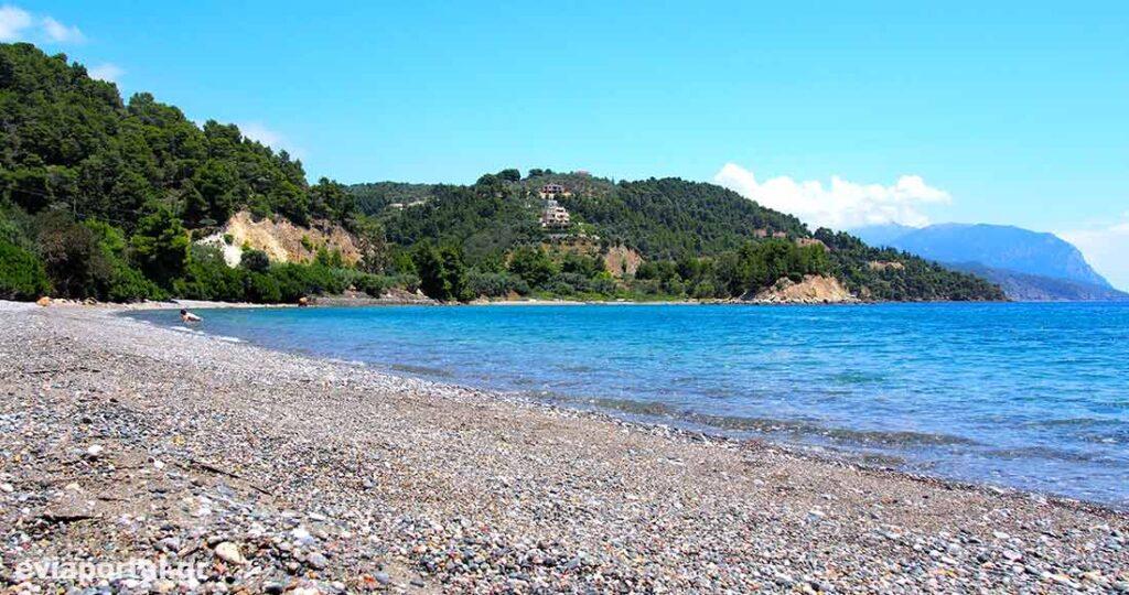 Παραλία Κοχύλι Λίμνη Ευβοίας