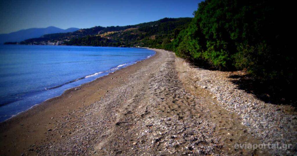 Παραλία Σπιάδας